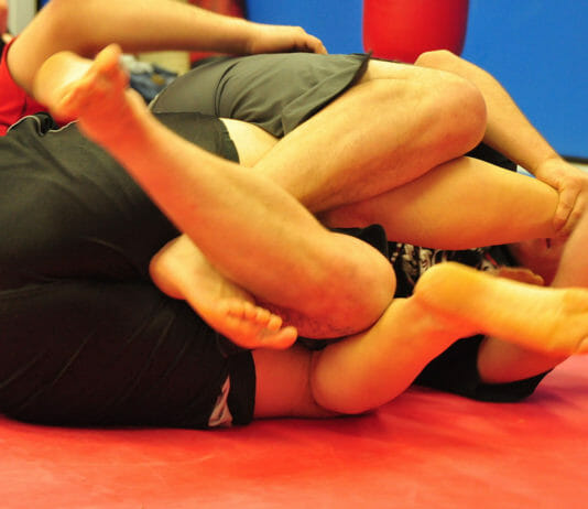 nogi submissions