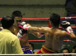 muay thai vs bjj