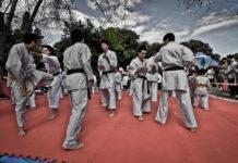 karate-vs-bjj