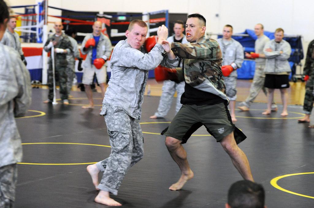cross-training-bjj-combat