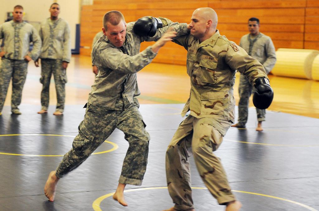 bjj-striking-self-defense